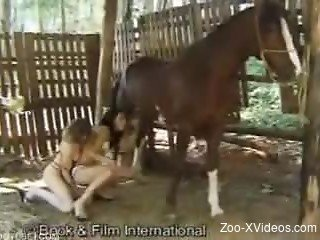 Hardcore outdoor bestiality with two babes and a stallion
