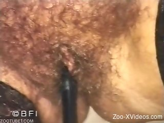 Hairy vagina of mature lady pounded by grand black male dog