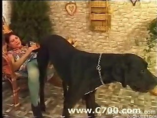 Busty zoophile looks nice with stallion cock in her cunt