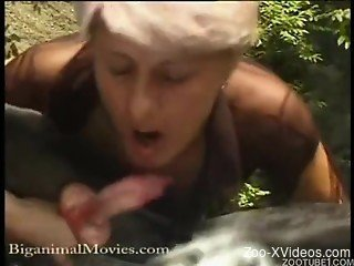 Blonde and redhead are sucking doggy's dick in the forest